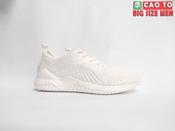 Giày trắng size 48